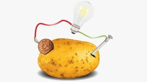 a guide to the potato light bulb experiment